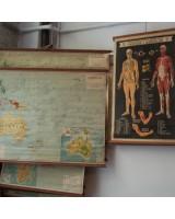 Planos escolares geografía y cuerpo humano